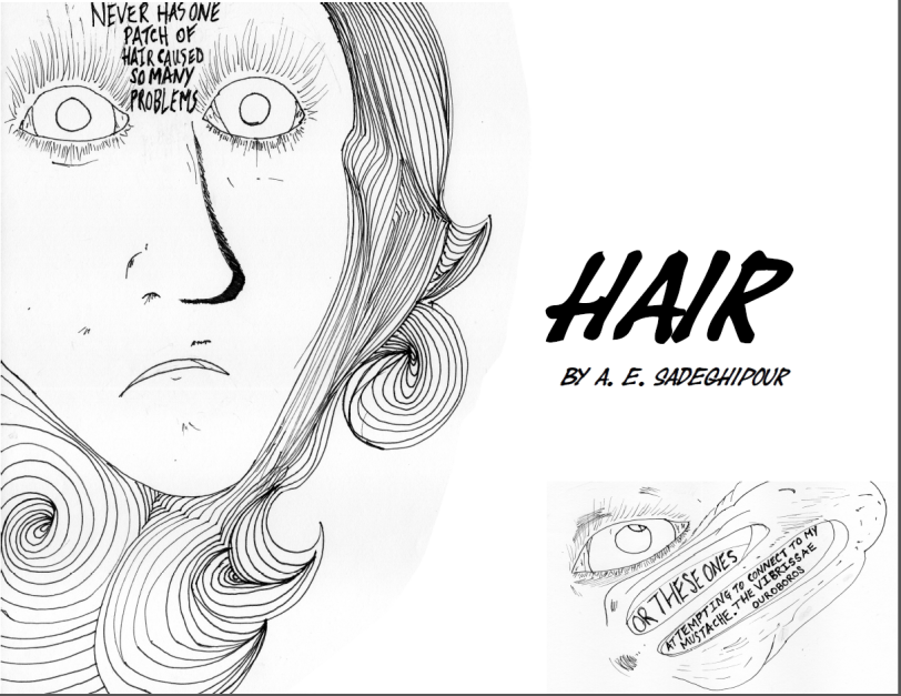 Hair Panel 1.png
