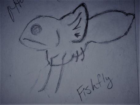 A.Sadeghipour.FishFly.JPG