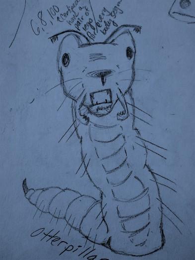 A.Sadeghipour.OtterPillar.JPG